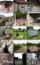 Camilla's & Roly's : sheep farming
