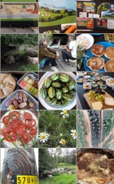clay oven baking, food feast & journal collage creation