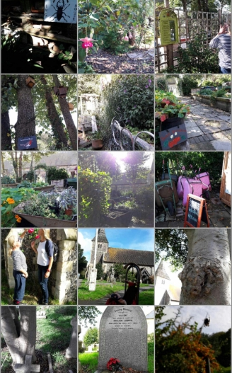 Hove's community Garden beyond St Leonard's church